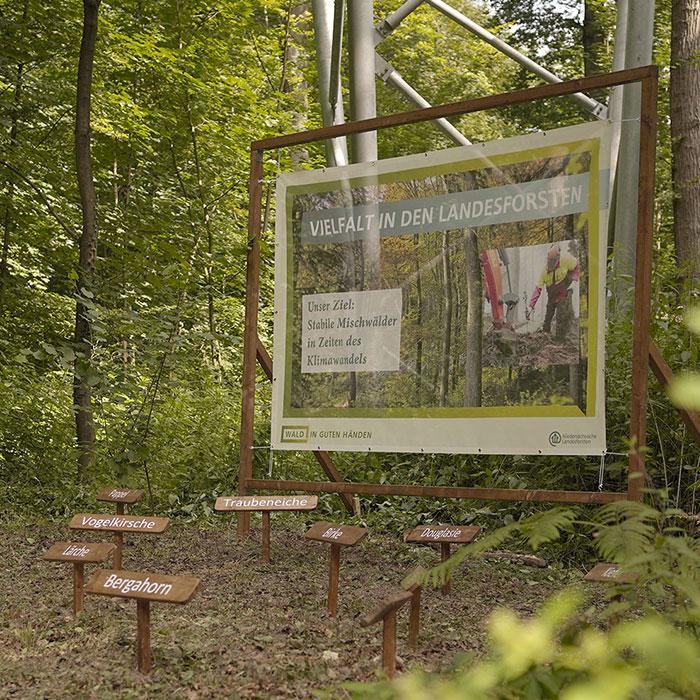 Mischwaldausstellung_Waldwochenende_Sep2020